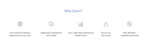Why Zoom App